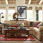 Living Room Savings