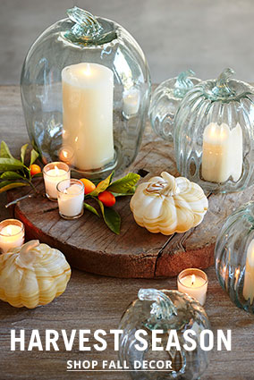 Shop Fall Decor