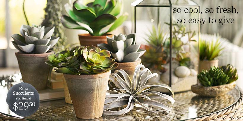 Faux Succulents