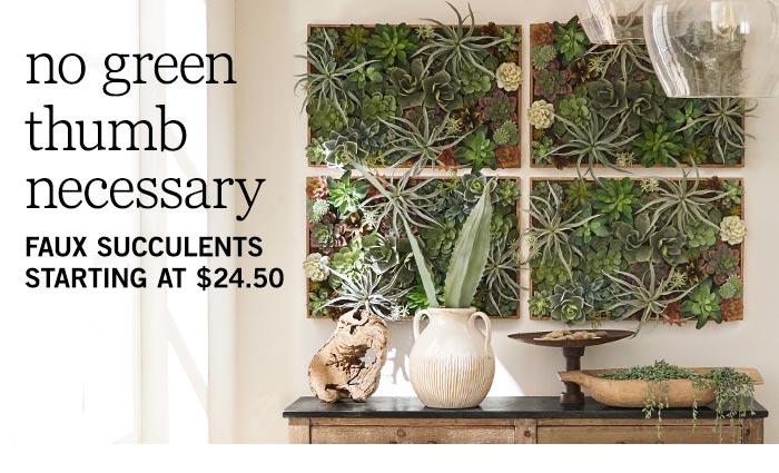 Succulents Shop