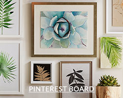 View Pinboard