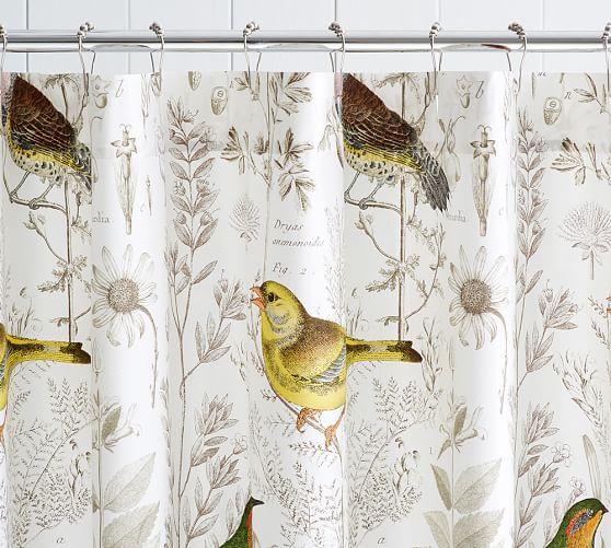 Meadowlark Print Organic Shower Curtain Pottery Barn