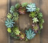 Faux Moss & Succulent Wreath