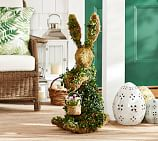 Live Ivy Bunny With Basket Topiary