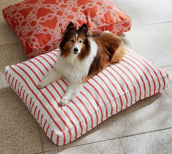 Pbpet On Pinterest Dog Bed Covers Pet Bowls And