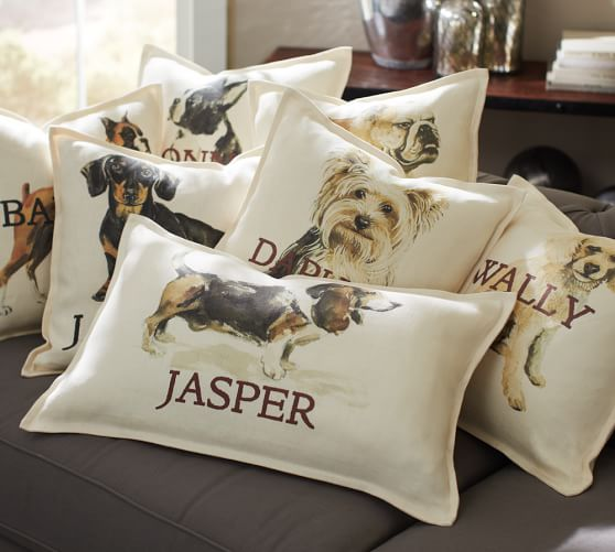 Personalized Painted Dog Pillow Covers Pottery Barn