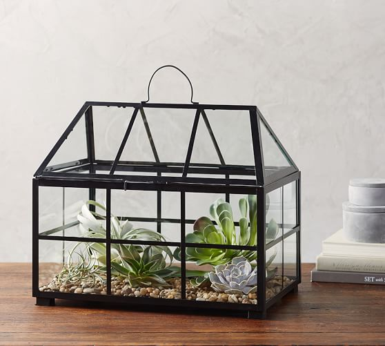 Metal And Glass Terrarium Pottery Barn