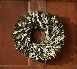 Silver Dollar Eucalyptus Wreath Pottery Barn