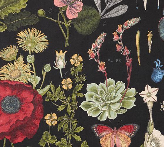 Pottery Barn Fabrics: Fabric By The Yard - Poppy Botanical