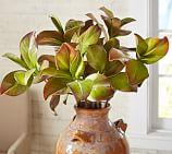 Faux Magnolia Leaf Stem