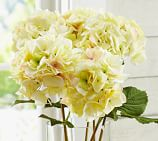 Faux Hydrangea Stem, Yellow