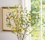 Faux Japanese Rose Kerria Japonica Stem, Yellow
