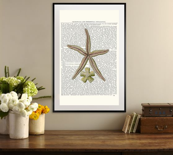Starfish Wall Decor Pottery Barn : Starfish framed print by zlatka paneva pottery barn