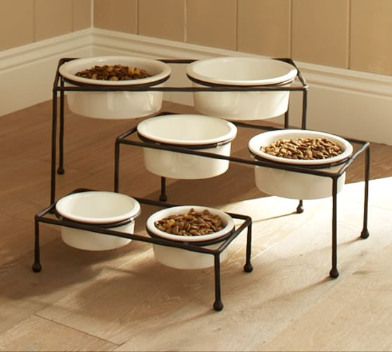 Images Dogs Standing In Food Bowls