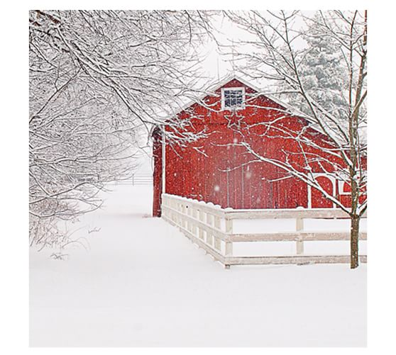 Red Barn In The Snow Framed Print By Cindy Taylor