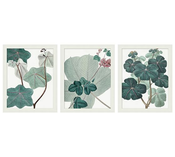 English Garden Framed Print, Set of 3, 16 x 20