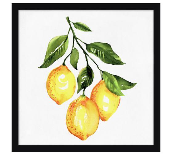 Lemons Framed Print, 19 x 19
