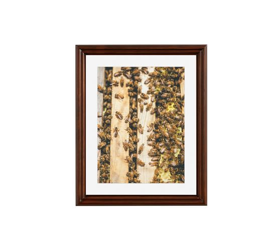 Busy Bees Framed Print By Camrin Dengel, 16x20