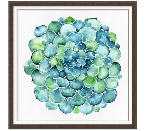 Watercolor Succulent Print, 20 x 20