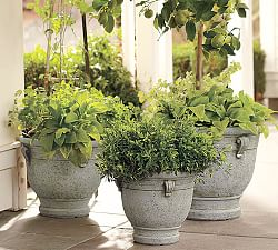 Patio Outdoor Planters Pottery Barn