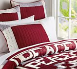 Sentiment Patchwork Patchwork Quilt, Twin, Red